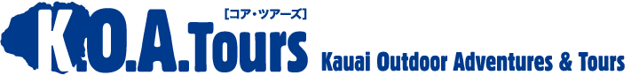 K.O.A.Tours  Kauai Outdoor Adventures & Tours